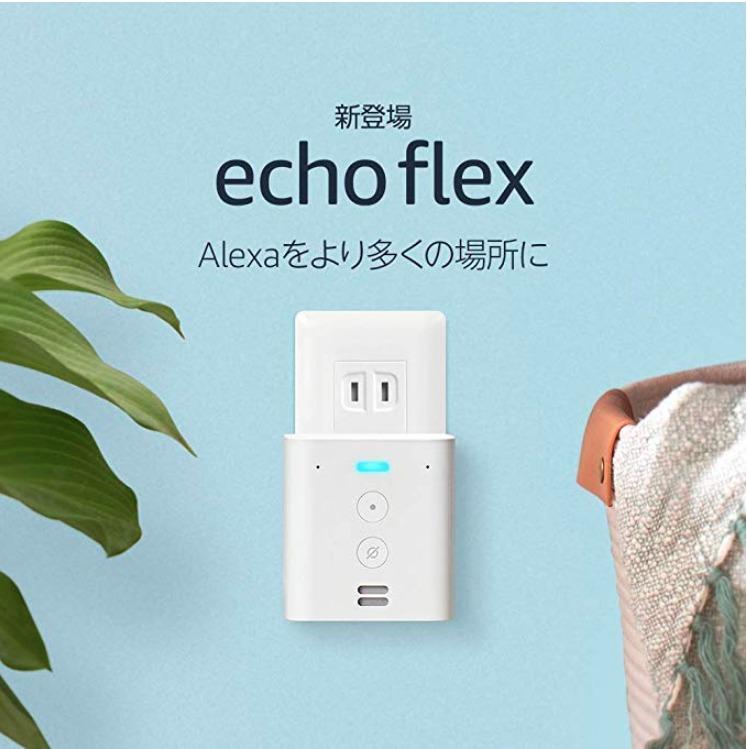 Echo Flex(with Alexa) 衝動買い