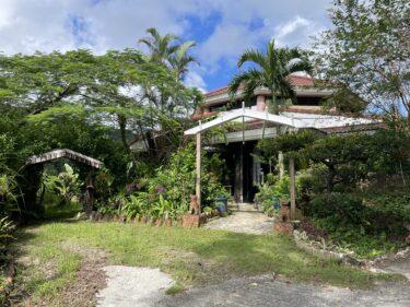 本部町『沖縄そば 森の家』大自然を感じながら沖縄そばを食す